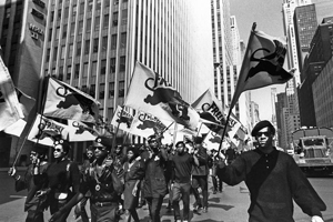 The Black Panther Party, originally the Black Panther Party for Self-Defense, was a political organization founded by Bobby Seale and Huey Newton in October 1966.